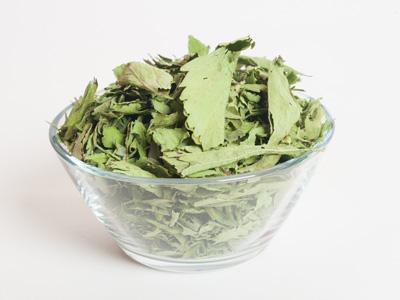 hoja entera de stevia